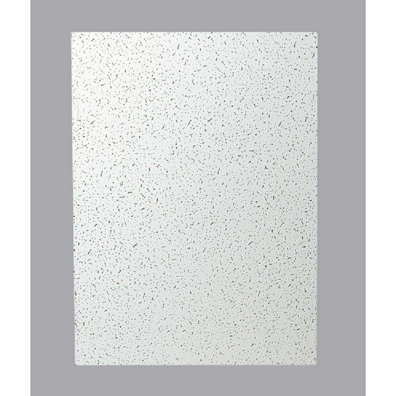 Plateau 2 Ft. x 4 Ft. White Mineral Fiber Ceiling Tile (8-Count) Image 2